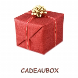 Dog Medium Cadeaubox